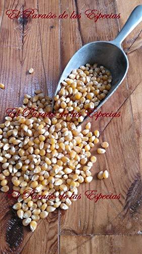 Palomitas de Maíz , Maíz Rosetero 43/45 USA , Semilla Extr