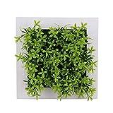 KPOON Plantas Artificiales Decorativas Marco De Exhibición De Fotos De Plantas De Flores Artificiales De 6x6 Pulgadas Decoración De La Ventana del Jardín De Casa (Size:OneSize; Color:8)