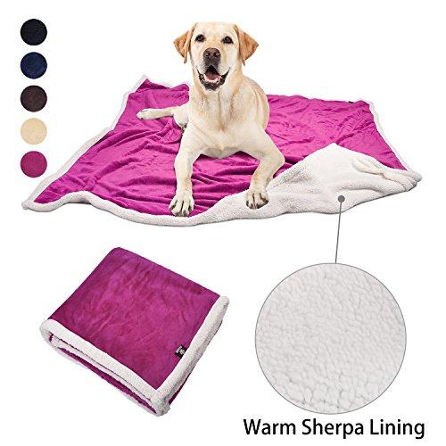 Hundedecke, Super Weiches Warmes Sherpa Fleece Plüsch Hund Decken und Überwürfe für Kleine Mittlere Große Hunde Puppy Doggy Pet Katzen, 60