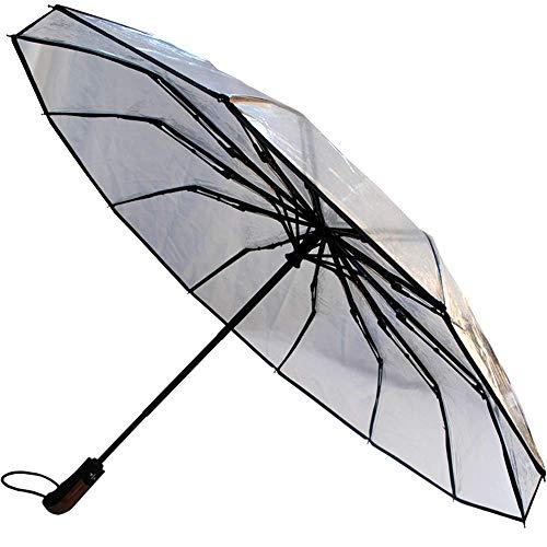 COLLAR AND CUFFS LONDON - SELTEN 12 Rippen Windproof und STARK - Verstärkt mit Fiberglas - StormDefender Clear Taschenschirm - Automatik AUF UND ZU - Regenschirm Reise Transparent Durchsichtig