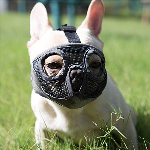 JYHY Short Snout Dog Muzzles- Adjustable Breathable Mesh Bulldog Muzzle for Biting Chewing Barking Training Dog Mask/Grey (Eyehole) S