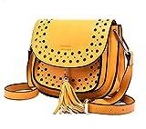 Di Grazia Women Italian Tassel Saddle CrossBody Sling Bag (Yellow, Yellow-Tassel-Cut-Out-Bag)