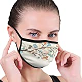 Mundschutz Gesichtsschutz Gesichtsschutzhülle Gesichtsbedeckung Schmetterlinge und Vögel 20 X 15CM