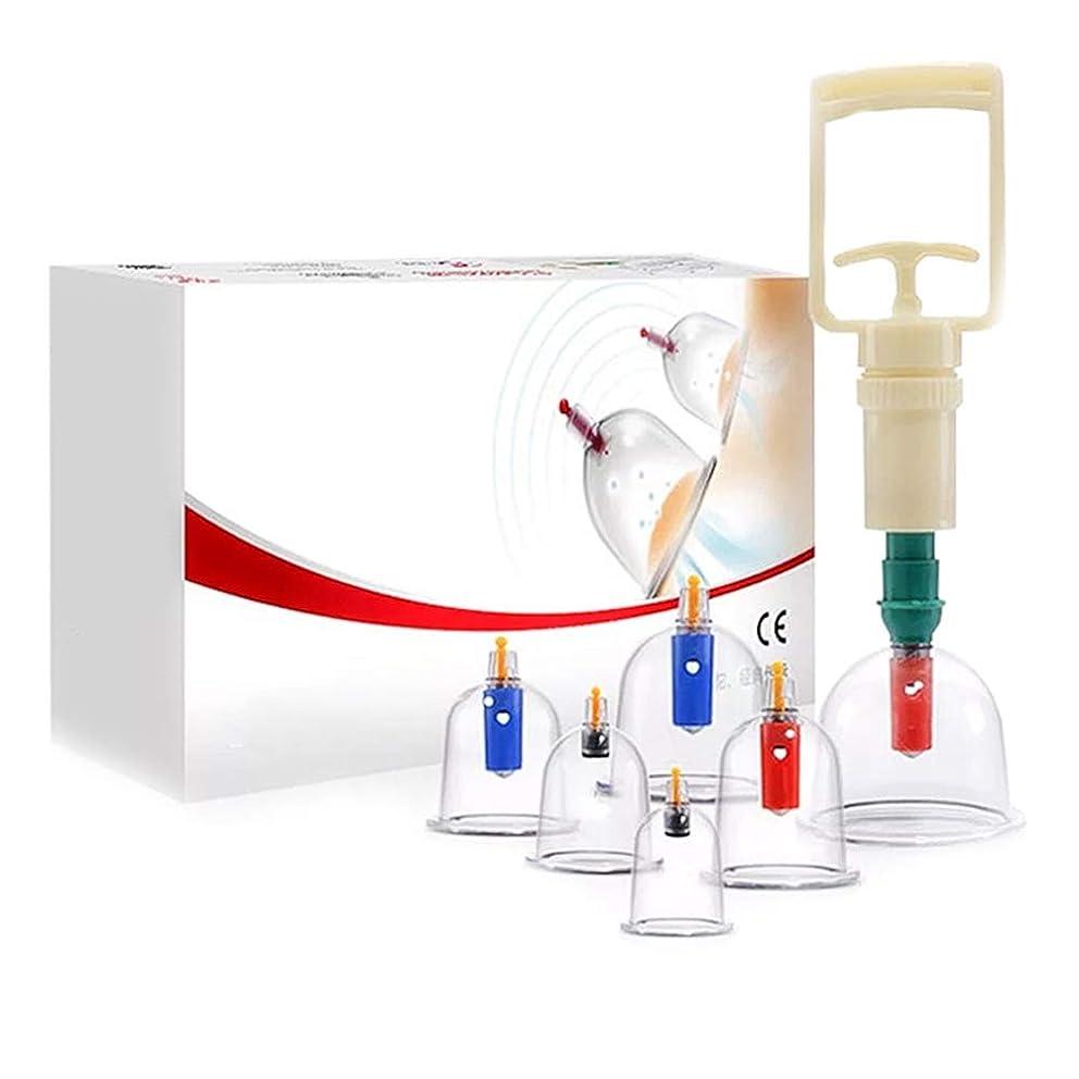 適用済みミサイル意気込み6カップカッピングセットプラスチック、真空吸引生体磁気中国ツボ療法、ポンプ付き医療、ボディマッサージ痛み緩和理学療法排泄毒素