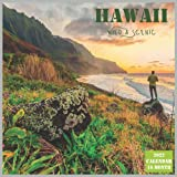 Hawaii Wild & Scenic Calendar 2022: Official US State Hawaii Calendar 2022, 16 Month Calendar 2022