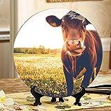 Piatto in ceramica fantasia mucche da latte in bianco e nero Piatto in ceramica divertente Piatto oscillante per la casa con espositore Decorazione Piatti domestici Decor
