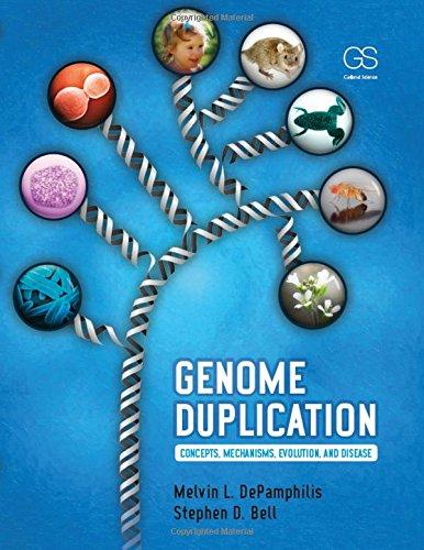DePamphilis, M: Genome Duplication