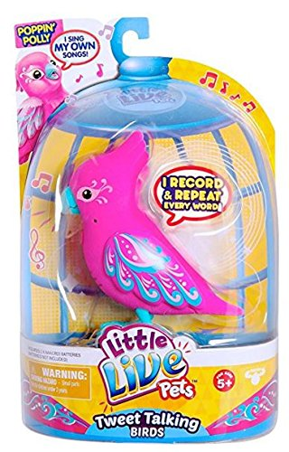 Little Live Pets - 33520 - S3 - Pack Simple Oiseau - Polly Rythmik