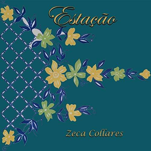 Zeca Collares