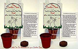 Zombie Plant Party Favors (2) or Goodie Bag Stuffer - Plays Dead When Touched. Includes Soil, Seeds & Mini Flower Pot. Supplies for Zombie or Halloween Themed Birthday. Plant it as a Party Activity