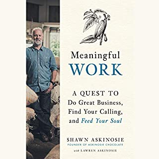 Meaningful Work audiobook cover art