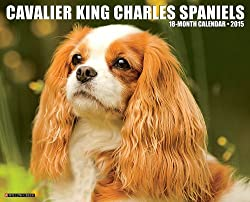 Cavalier King Charles Spaniels 18-Month 2015 Calendar[Willow Creek Press][Amazon]