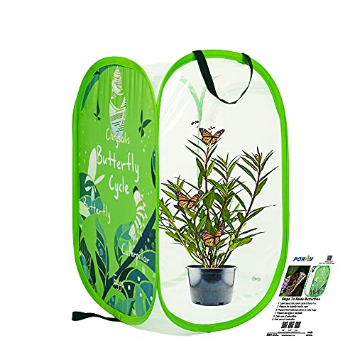 Pop-up Insect and Butterfly Habitat,24' Tall Milkweed Plants Net ,Collapsible Mesh Cage with Transparent PVC Wall for Observation 16 x 16 x 24 Inches