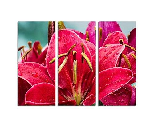 130x90cm – Keilrahmenbild Lilie Regentropfen rot Taglilie 3teiliges Wandbild auf Leinwand und Keilrahmen - Fotobild Kunstdruck Artprint