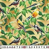 SP-2977 小枝に留まるカラフルな小鳥 オールオーバー/ベージュ コットンプリント生地