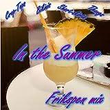 Crop-tops, Bikinis, Short-skirts & Thongs (In the Summer) (feat. Devon Rose) [Frikspen Remix]
