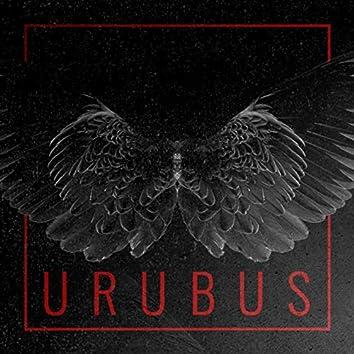 Urubus