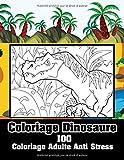 Coloriage Dinosaure 100 Coloriage Adulte Anti Stress: 108 Pages Nouveautés Dinosaures Livre Coloriage Adulte Homme And Femme, De Détente Avec Géant ... Du Stress, Feutre Difficile & Mystere!