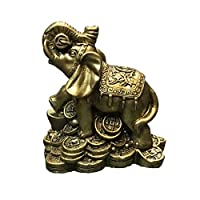 Protection, good luck, wisdom, and fertility are the main feng shui energies brought by the symbol of the elephant into any space, be it home or office. The elephants are usually depicted with the trunk up, as this symbolizes the showering of good lu...