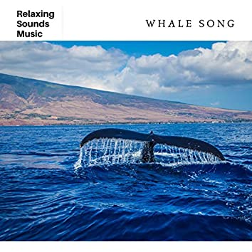 Whale Song for Sleep