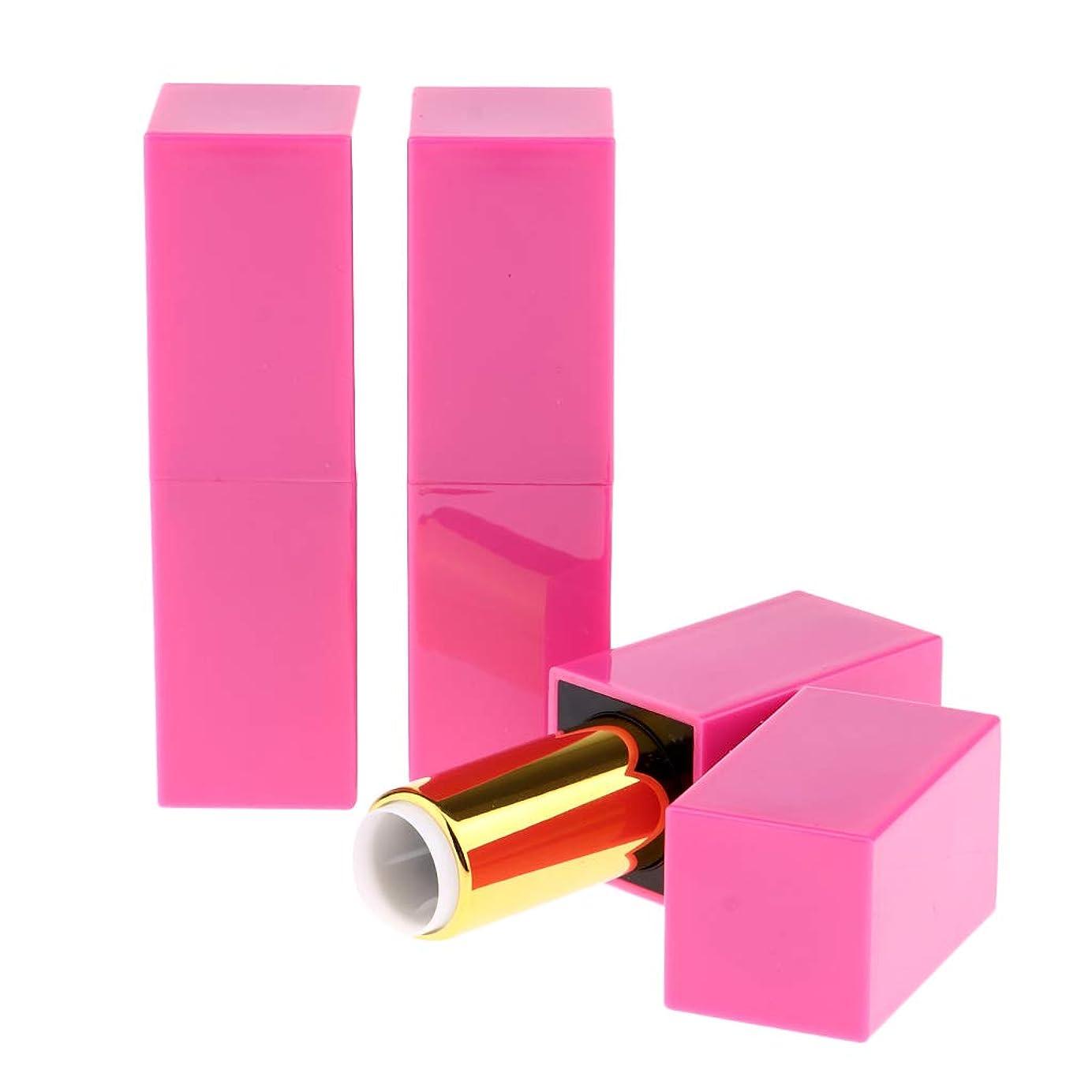 テーブルを設定する持つ突き刺すF Fityle 空の口紅チューブ 全3本 口紅チューブ 化粧チューブ 空詰め替えリップチューブ