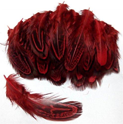 ERGEOB Natur Dekoration Hahnfeder fasan Feder 50 stück, 4-7cm läng, Ideal für Kostüme, Hüte, basteln, Zuhause Dekor, DIY rot