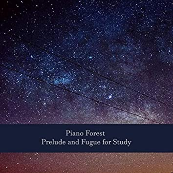 Piano Forest: Prelude and Fugue for Study