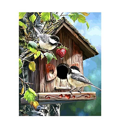 N/C Erwachsene Kinder Malen Nach Zahlen Kits Vogelhaus DIY Ölgemälde Zeichnung Home Haus Dekor-40*50 cm (Ohne Rahmen)