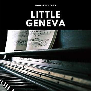 Little Geneva