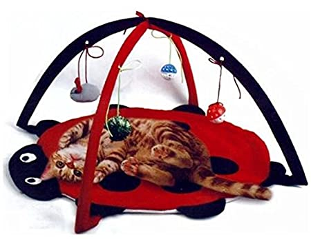 a cat activity center with 4 hanging toys and a ladybug shaped rug