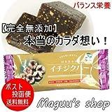 デーツ フルーツ バー 40g made in Japan 無添加・無着色 バイオシード (イチジクバー)