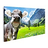 Bild auf Leinwand Kuh in den Schweizer Alpen Bilder