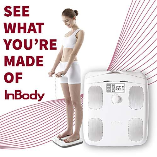 InBody Dial Body Fat Analyzer (White)