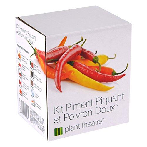 Kit Piment Piquant et Poivron Doux par Plant Theatre - 6 variétés différentes à cultiver soi-même – Idée cadeau