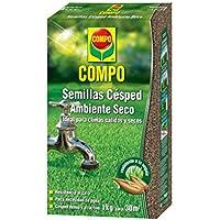 Compo Semillas de césped Resistente al Calor y a la sequía para ambientes Secos y soleados, 1 kg, 50 m², 32x18.5x6.5 cm