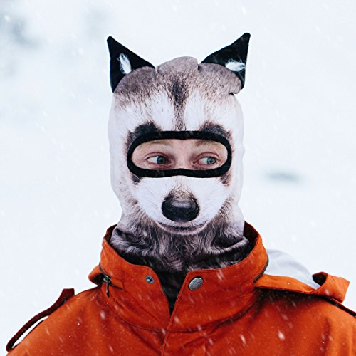 Beardo ® Original Sturmhaube Sturmhauben HD (verschiedene Designs) | Skimaske, Kälteschutz, Gesichtsschutz, Sturmmaske (Waschbär)