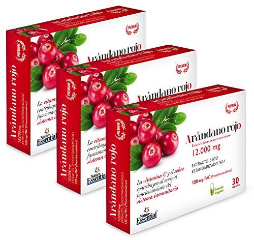 Nature Essential Arándano con Gayuba, D-manosa, vitamina C y cobre. rojo extracto seco 240 mg (120 mg PAC) - 30 cápsulas vegetales, Pack 3 unidades