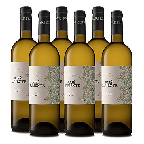 Vino Blanco Sauvignon Blanc Jose Pariente de 75 cl - D.O. Rueda - Bodegas Jose Pariente (Pack de 6 botellas)
