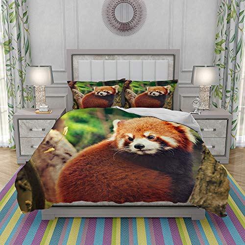 REIOIYE Duvet Cover Set-Bedding,Red Panda Sits On The Tree,Quilt Cover Bedlinen-Microfibre 200x200cm with 2 Pillowcase 50x80cm