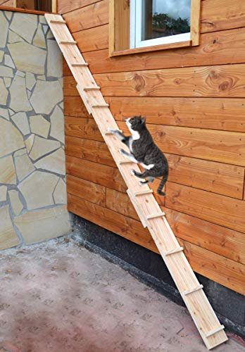 Ruhti - Katzentreppe Katzenleiter Katzenstufe für Balkon, Treppe etc.| 1 bis 7 m (5 m)