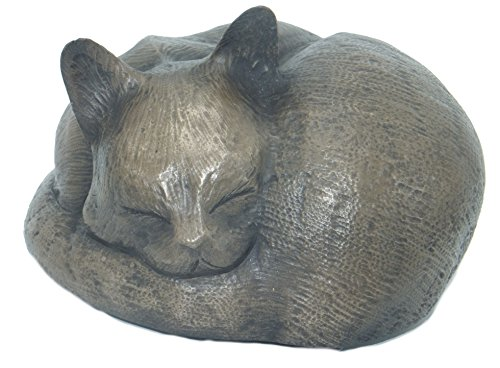 Rainbowbridge At Peace Katzen-Ascheschatulle Bronze