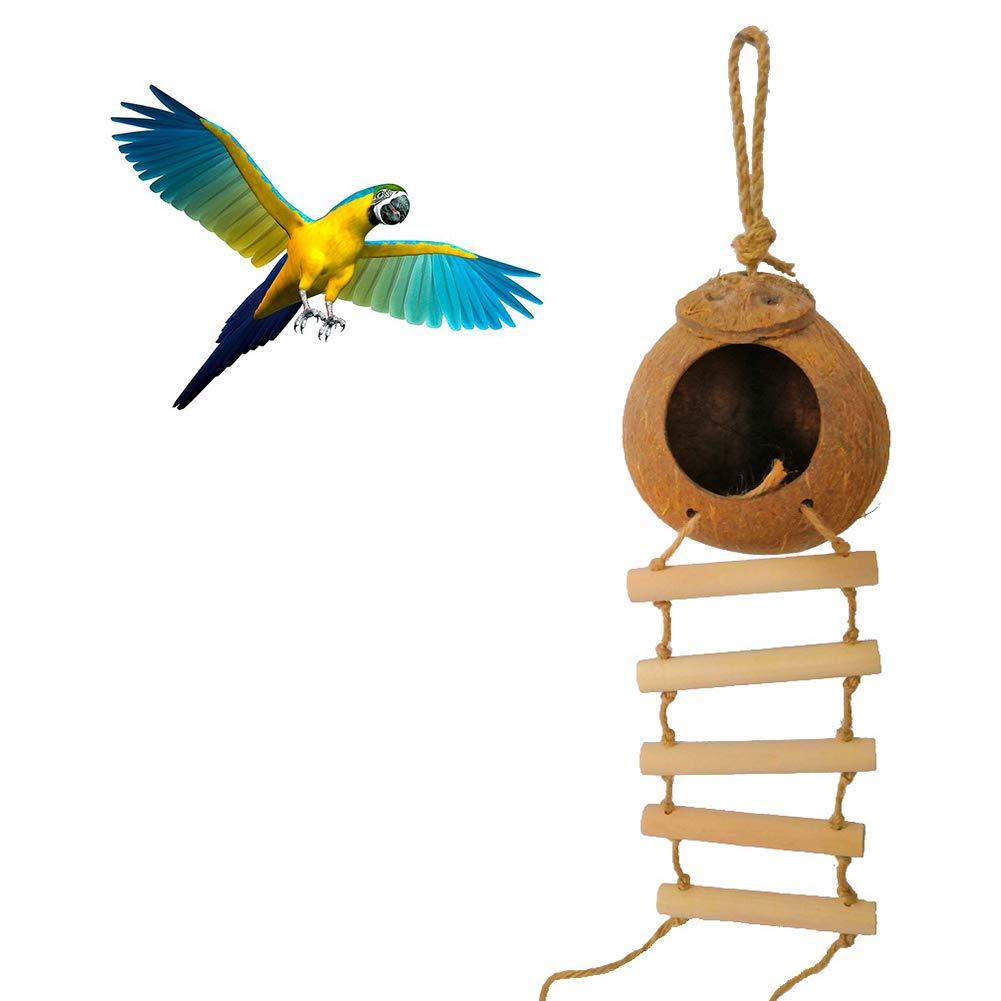 YSoutstripdu Separación Coco Shell Hamaca Loro Pájaro Mascota Nido Colgando Escalera Verano Cama Jaula Decoraciones Brown: Amazon.es: Hogar