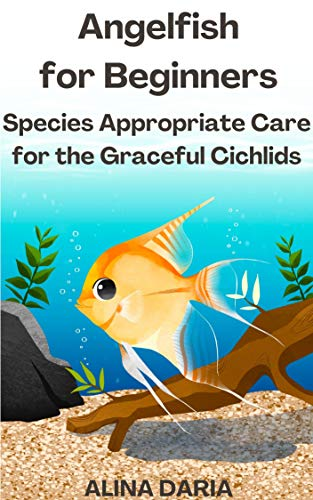 Angelfish for Beginners – Species Appropriate Care for the Graceful Cichlids (English Edition)