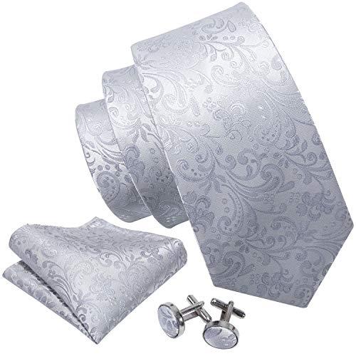 Barry.Wang Herren krawattenset Mit passendem Einstecktuch klassischem Paisleymuster Hochzeit Konfirmation
