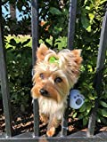FenceMate Dog Harness to Keep Pet Safe from Escaping (Small) Fits Girth 10'-16'