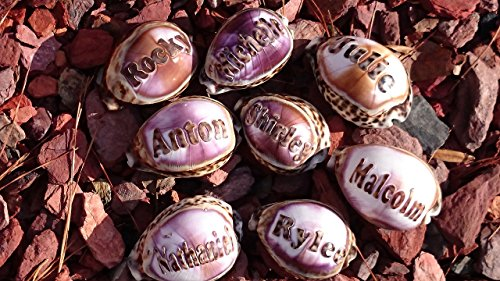 'Katelyn' Personalized Seashells Engraved. Names Engraved on a seashell - Hand Made - All Natural - Say It On A Shell