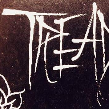 Treader