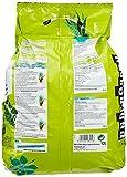 Zoom IMG-1 undergreen jungle fever terriccio per