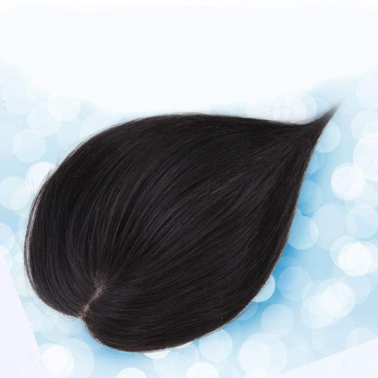 無駄にスパイラル歴史家HOHYLLYA ヘアエクステンションダークブラウンストレート人毛ウィッグパーティーウィッグで女性のリアルヘアクリップ (色 : [9x14] 30cm natural black)
