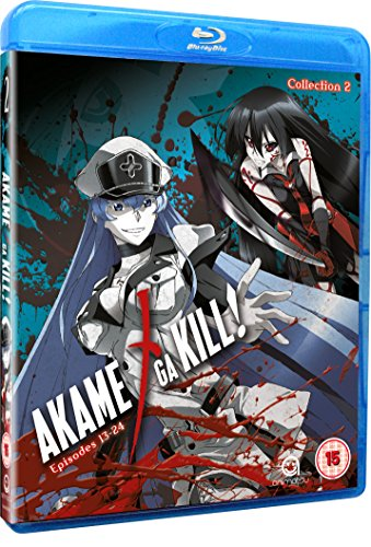 Akame Ga Kill Collection 2 (Episodes 13-24) [Blu-ray] [UK Import]